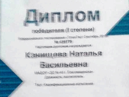 Воспитатель: Канищева Н.В.